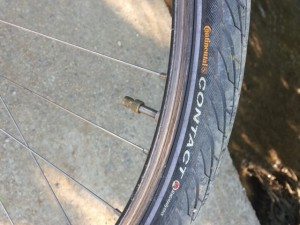 ted tire